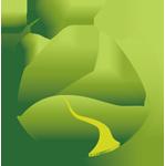 六安瓜片是什么茶|六安瓜片价格|功效|作用|图片|产地 - 名茶瓜片